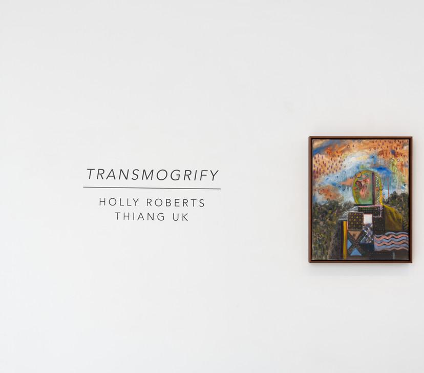 """Transmogrify"" Installation Shot"