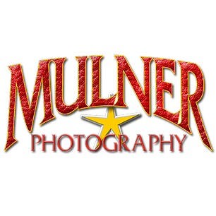 Mulner logo clear no numbers.png