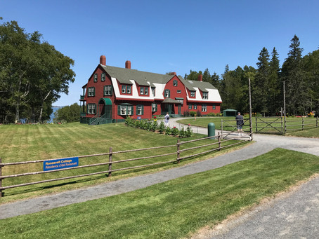 May Quarantine Wellness Check-in from Mixolo founder, Carolyn Walton Lynch