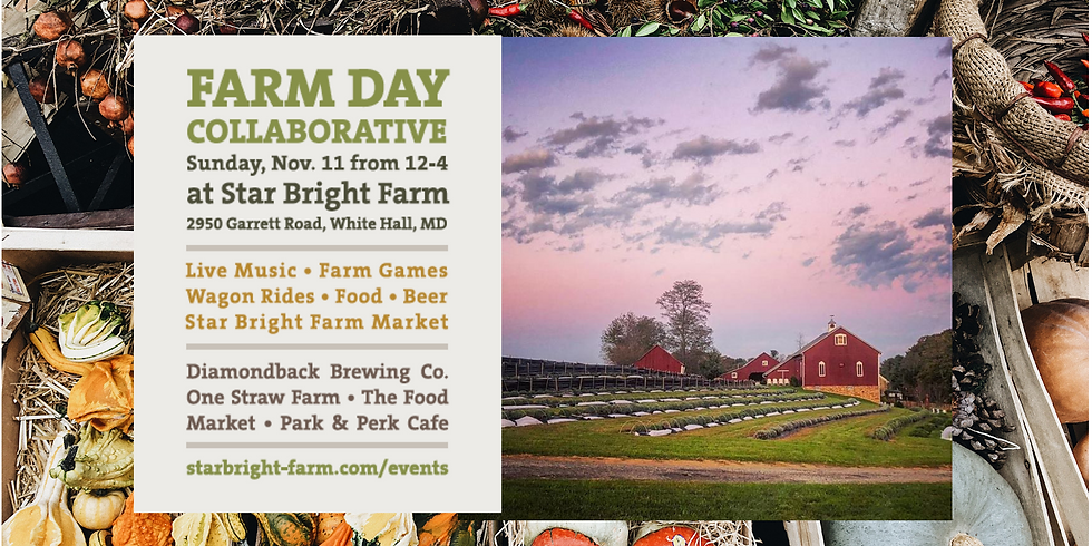 Farm-to-table, IRL:  Join Mixolo at the Farm Day Collaborative at Star Bright Farm
