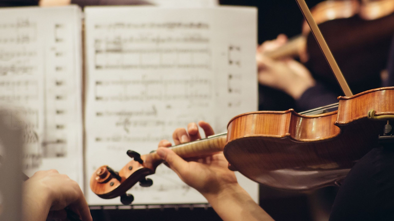Join us for another of Baltimore Symphony Orchestra's Pop(up)s