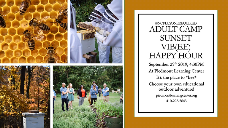 Adult Camp:  Sunset VIB(ee) Happy Hour