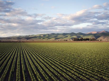 11 dúvidas sobre o Cadastro Ambiental Rural (CAR)