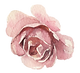 flower 14.png