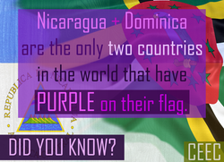 purpleflag