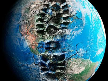 К вопросу о принципах развития цивилизации в условиях глобального экологического кризиса