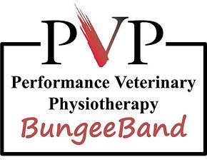 BungeeBand Logo.jpg
