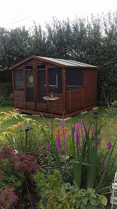 Performance Vet Physio Kennels