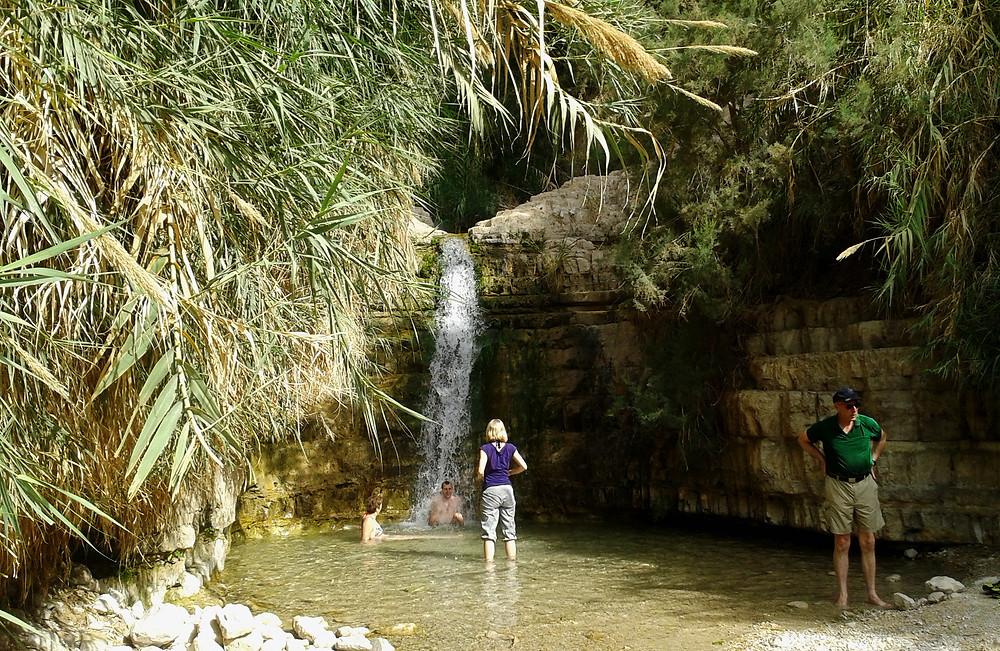 Ein Gedi Wasserfall mit Badebecken am Toten Meer, Israel