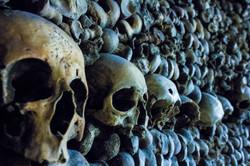 Skulls Catacomb (Paris, France)