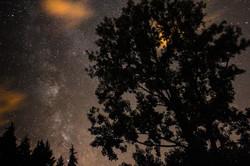 Milky Way (Black Mountain, France)