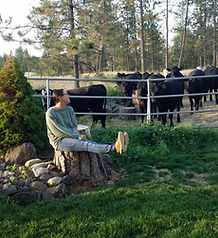 Tracy&Cows