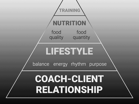 The Fitness success pyramid