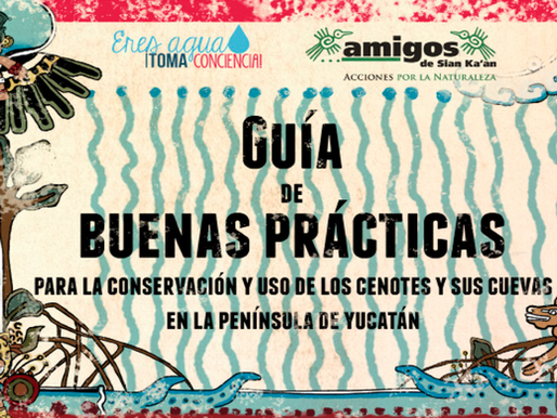 Guía de Buenas Prácticas para la Conservación y Uso de los Cenotes y sus Cuevas en la PY