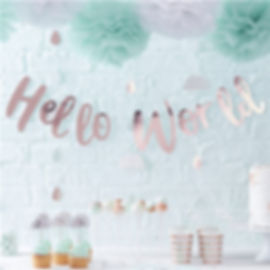 Hello World Rose Gold Letter Bunting - 2