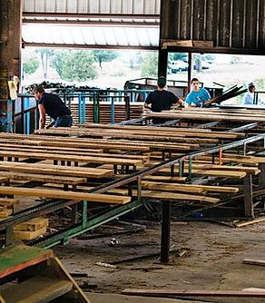Lumber Green Chain.jpg