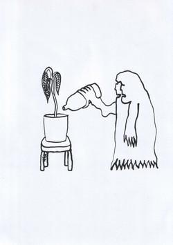 Ember és szobanövény