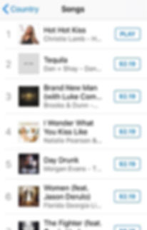 #1 on iTunes HHK.jpg