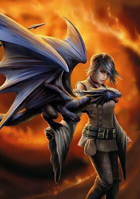 Dragon Trainer Billet
