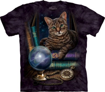 The Mountain The Fortune Teller Gothic Lisa Parker T Shirt