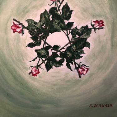 Rosenpentagramm/Pentagram of Roses