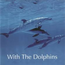 CD With The Dolphins