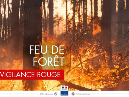 Attention feu de forêt