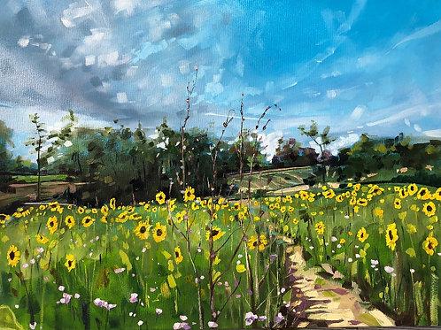 'Sunflower Path' on Flexi phone case