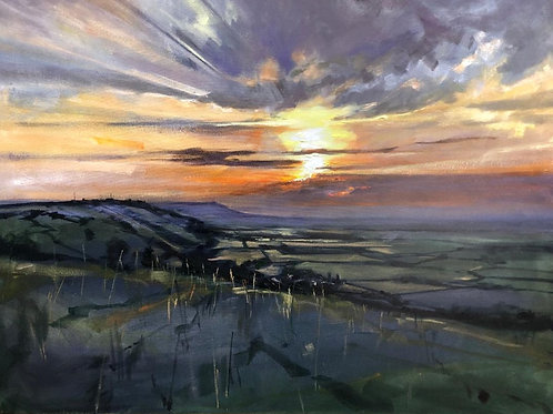 'View From top of The Downs' on Flexi phone case