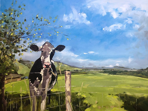 'Plumpton Cow' on Folio and Wallet style phone case