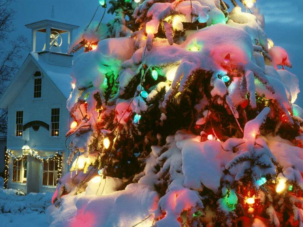 Sapin illuminé dans la neige