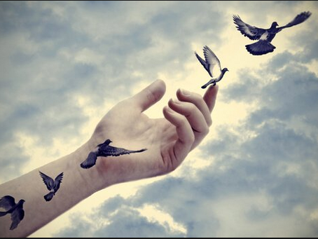 Liberdade por inteiro