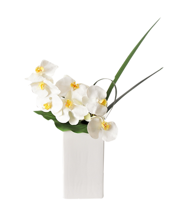 Bouquet PHALAENOPSIS M WH Vase céramique Blanc