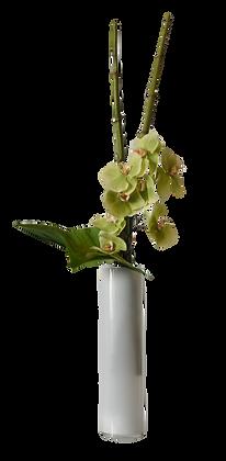 Bouquet L PHALAENOPSIS GR Vase Verre Blanc