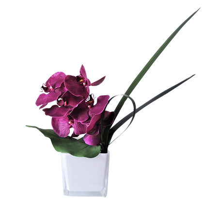 Bouquet PHALAENOPSIS S PR Vase Verre Blanc