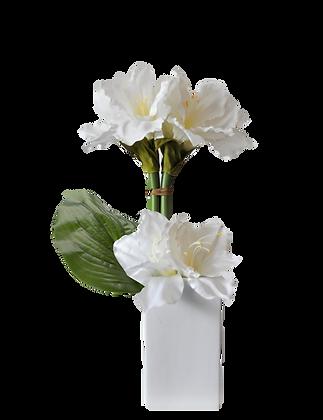 Bouquet AMARYLLIS M WH Vase Céramique Blanc