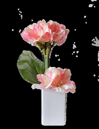 Bouquet AMARYLLIS M PK Vase Céramique Blanc