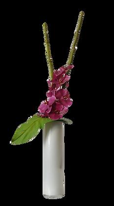 Bouquet L PHALAENOPSIS PR Vase Verre Blanc