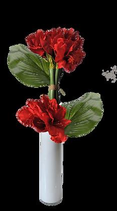 Bouquet AMARYLLIS L RD Vase verre Blanc