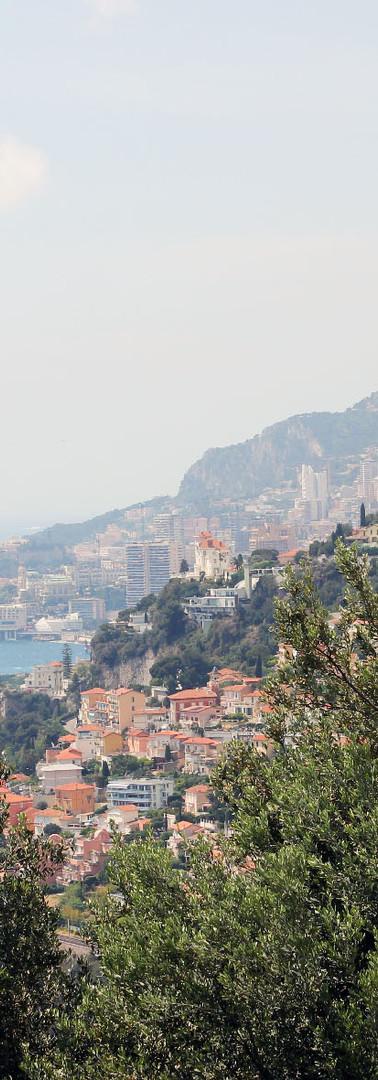 Rilievo area di cantiere Montecarlo