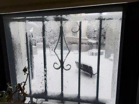 20201217-december-big-snow2BW.jpg