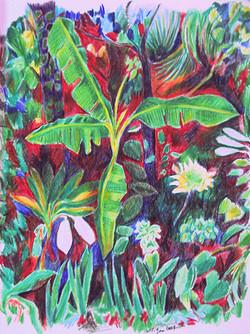 Jungle Portrait