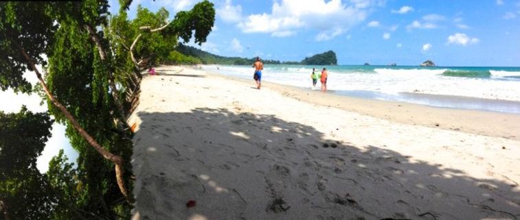 Beach Cliff - Photograph