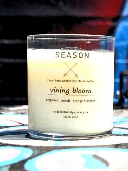 vining bloom