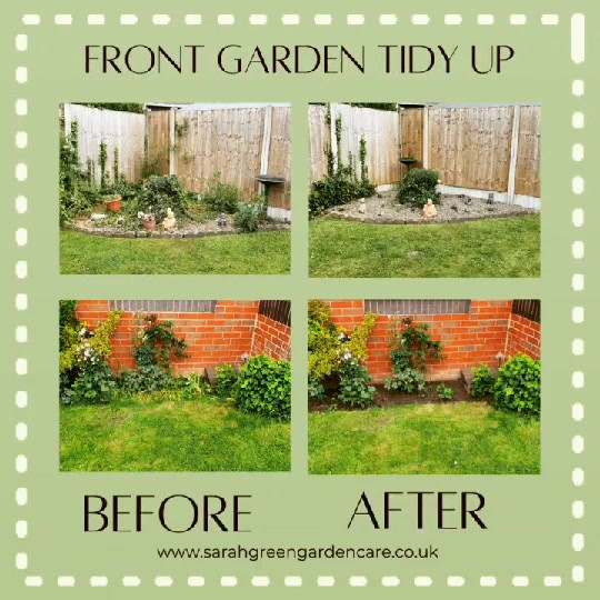 Front garden tidy up