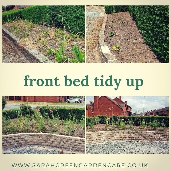 Front bed tidy up