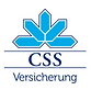 CSSLogo.png