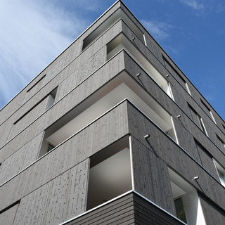 Mehrfamilienhaus Rothenburg LU