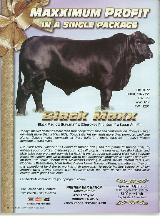 Black Maxx May beefmaster Mag.jpg