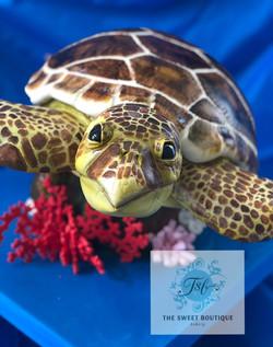 3D Sculpted Sea Turtle Cake